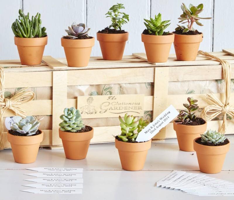 plant-pot-succulent-wedding-favours (1)