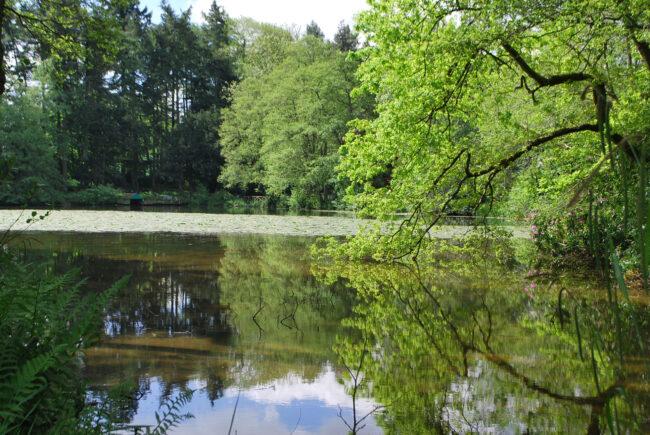 Lakes Edge at Pudleston Court